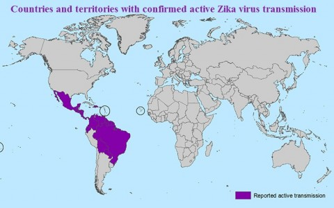 A to Zika: What You Need to Know